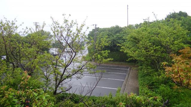 駐車場に観光バスはいない