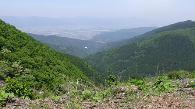 徳島平野を俯瞰しながら