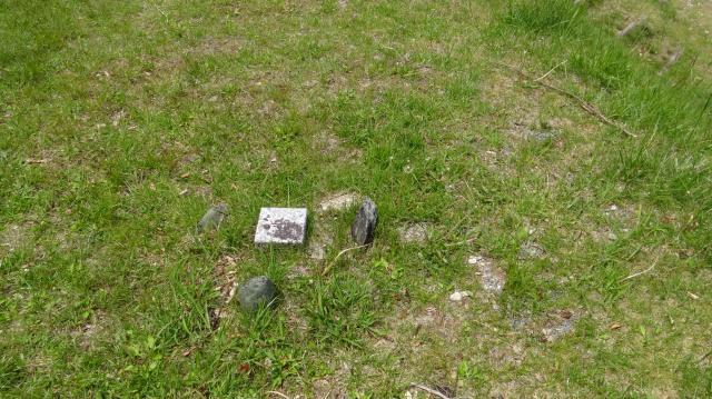 これが三角点の標石