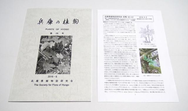 兵庫の植物第26号