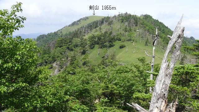 ハクサンシャクナゲ自生地から剣山山頂を眺めた