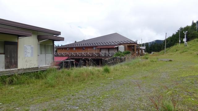 8月25日、剣山スキー場はススキ満開