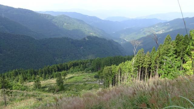 林道の1000m地点から半田川に沿う谷全体を見る