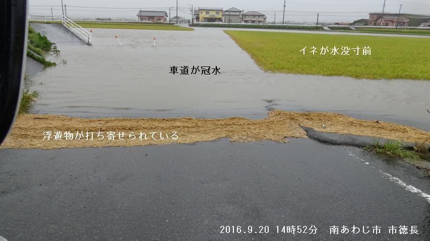 南あわじ市でも河川の後背湿地で冠水被害あり