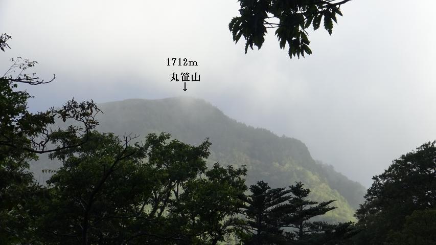 マイタケ発生地から丸笹山が見える