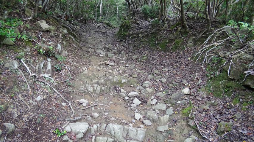 登山道(礫が多いところ)