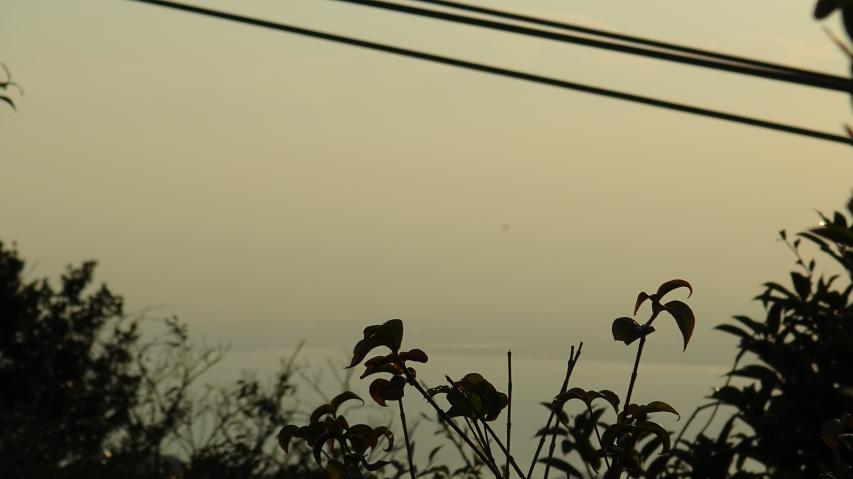 剣山はおろか徳島市も見えない