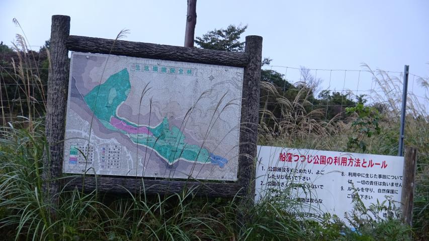 船窪つつじ公園