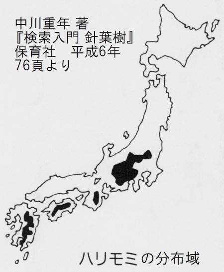 ハリモミの分布域