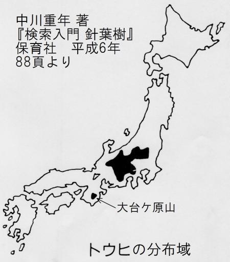 トウヒの分布域