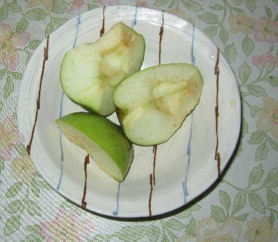 目指せ!奇跡のリンゴⅡ (4)