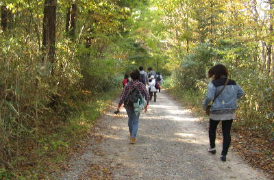 自然歩道へ