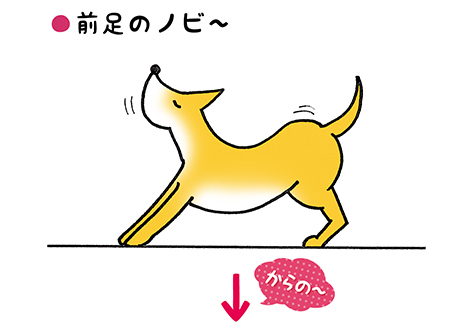 nobi_1_1.jpg