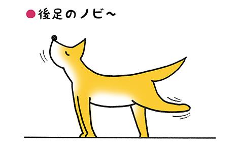 nobi_1_2.jpg