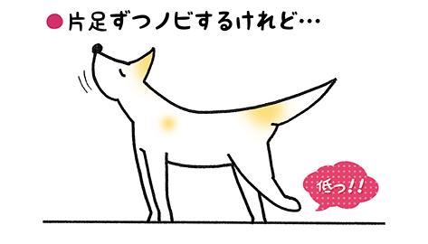 nobi_3.jpg