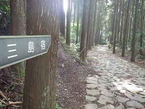 箱根古道14