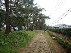 箱根古道16