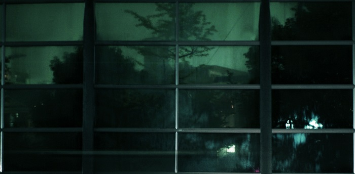 フリー画像夜の森