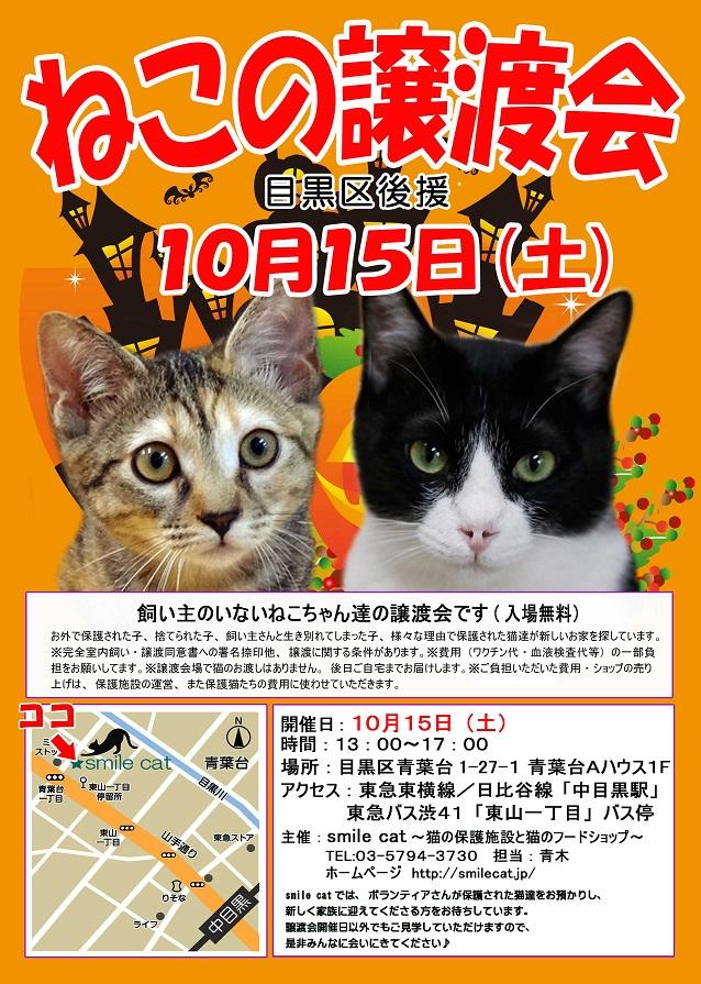 20161015_p.jpg