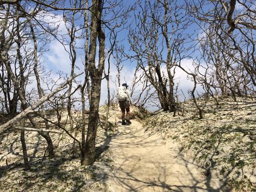 日向山ハイキング1006.jpg