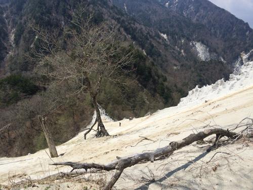 日向山ハイキング1043.jpg