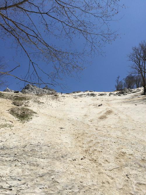 日向山ハイキング1057.jpg