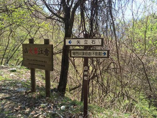 日向山ハイキング1132.jpg
