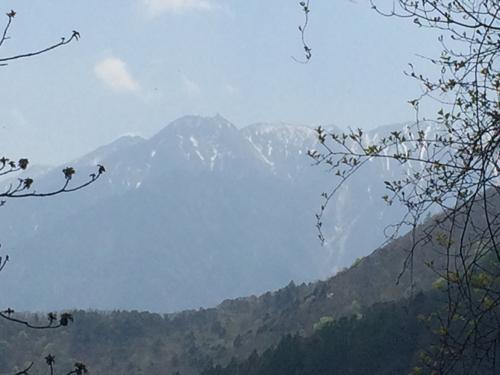 日向山ハイキング1200.jpg