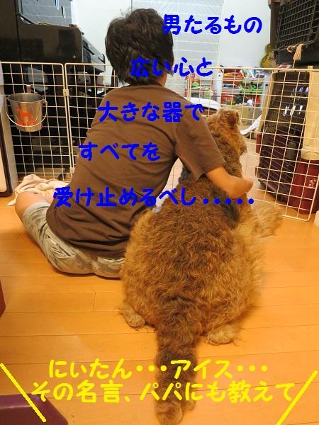 IMG_0018_20161009005401b6a.jpg
