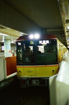 41920014.jpg