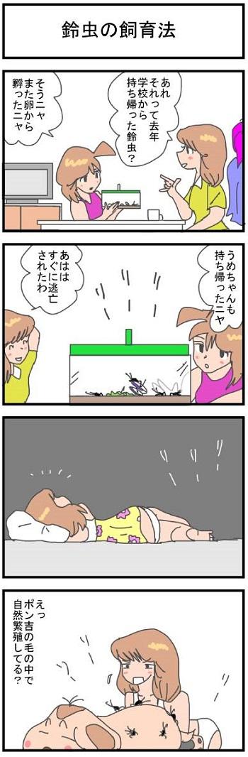 鈴虫の飼育法