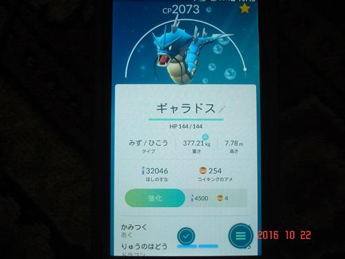 ポケ622