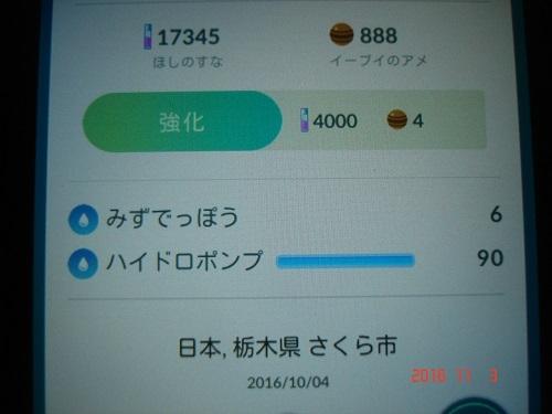 ポケ705