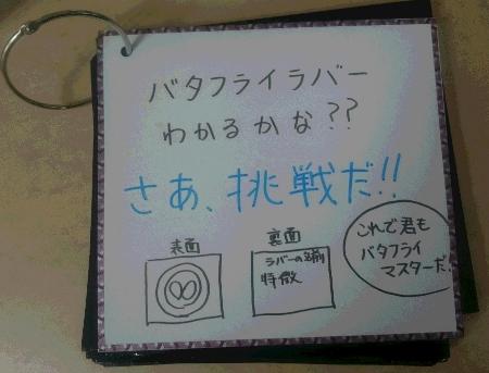 バタフライカード表紙 (450x343)