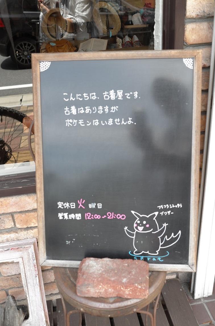 L1010557.jpg