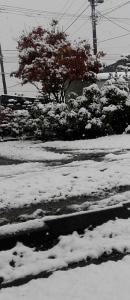2016年10月23日雪