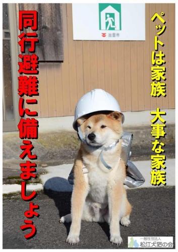 防災コタさん