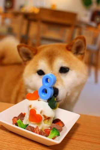 8才のバースデーケーキ