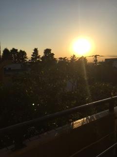 先日の夕日