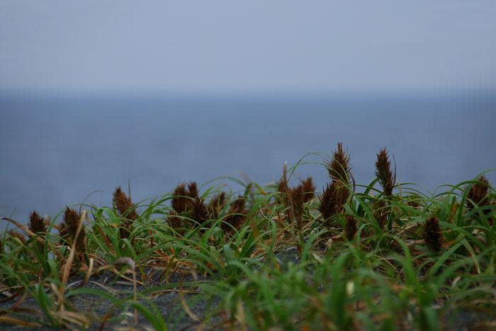 scenery160701_02.jpg