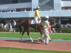 20120614 川崎1R 3歳 テンションコード 03