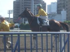 20120614 川崎1R 3歳 テンションコード 04