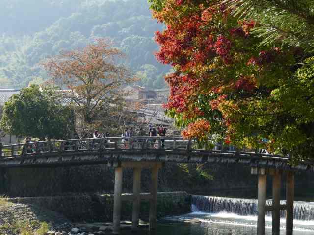 嵐山紅葉4