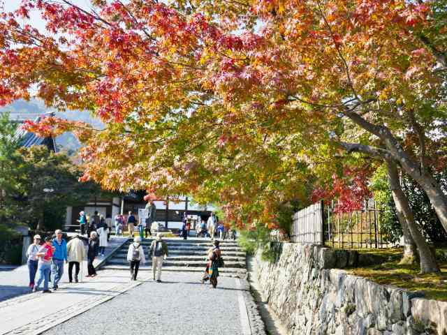 嵐山紅葉5
