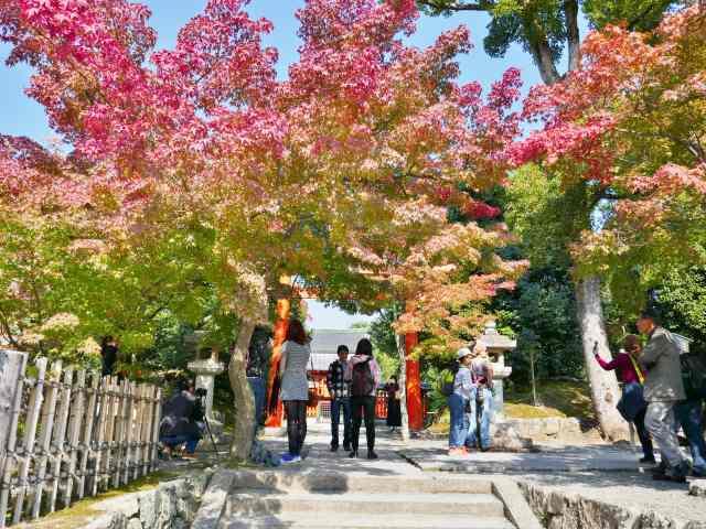 嵐山紅葉6