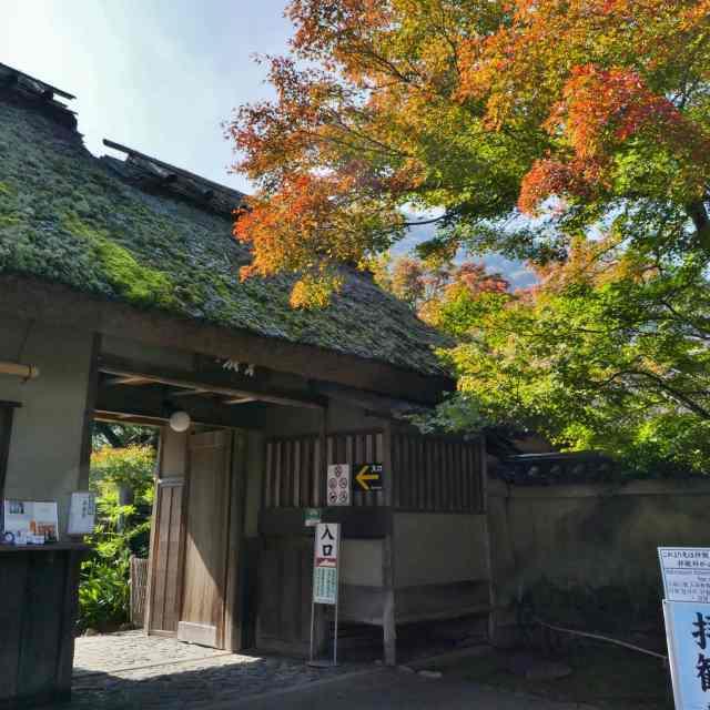 嵐山紅葉9