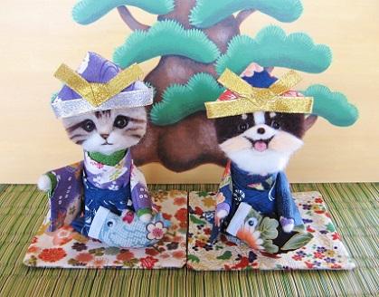 猫ちゃんとチワワちゃんの五月人形です