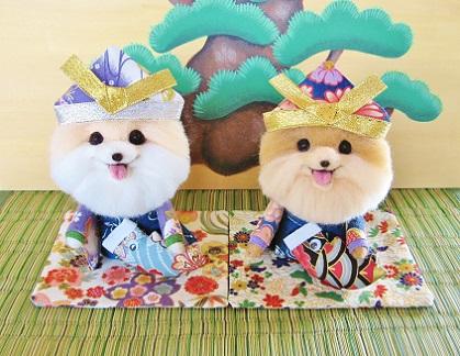 今年の羊毛ポメラニアン 五月人形です