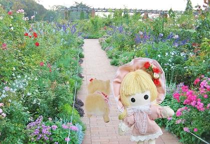 お花の小道です
