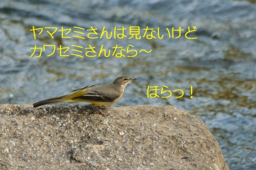 030_20161018192415db1.jpg